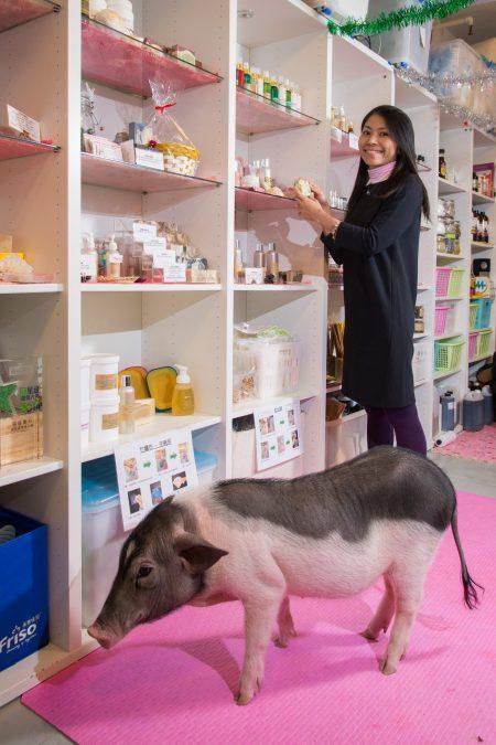 店舗平日除了由素心打理外,還有她的竉物波波作店員,一起提倡「可持續」的天然綠色素食觀念。
