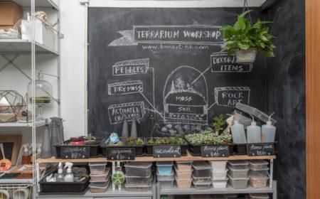 揀選襯托盆景的植物也是大有學問,大家不妨先細閱店內的解構圖。